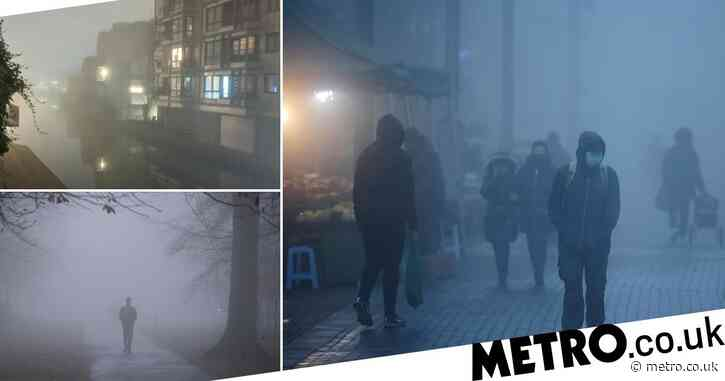 Blanket of fog covers Britain after temperatures plummet overnight