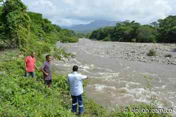 El proyecto chino que buscaba salvar al río Guatapurí sembrando guaduas - ElPilón.com.co