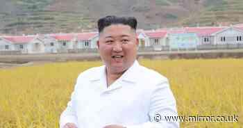 North Korea 'tried to hack' UK drugmaker which is producing coronavirus vaccine