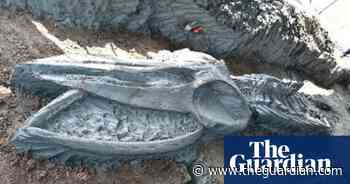 Ancient 40ft-long whale skeleton discovered in Thailand