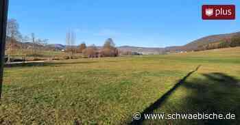 Mehr Anfragen als freie Bauplätze in Rietheim-Weilheim: Wer Chancen hat und wer nicht - Schwäbische