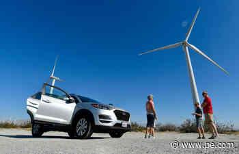 Palm Springs wind farm tours provide breezy entertainment, even during coronavirus - Press-Enterprise