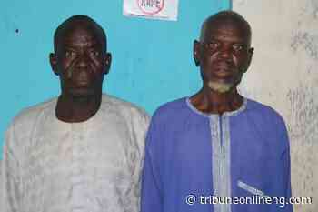 Bauchi Police arrests 63-year-old, 56-year-old men for alleged raping 13-year-old girl - NIGERIAN TRIBUNE