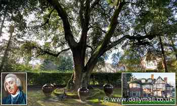 Hertfordshire home with Capability Brown tree on sale for £7.5m