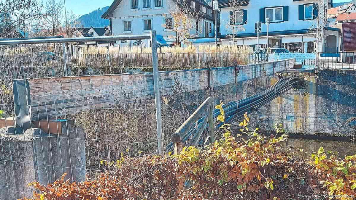 Baiersbronn: Vier Brücken stehen auf der Agenda - Baiersbronn - Schwarzwälder Bote