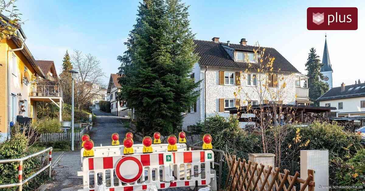 Stadt Lindau muss viel Geld in sanierungsbedürftige Brücken stecken - Schwäbische