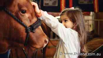 Stock show youth a life of resilience, compassion and grit