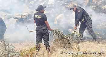 Incendio forestal casi arrasa una comunidad – Los Andes - Los Andes Perú