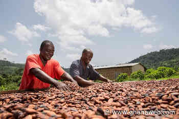 Cote d'Ivoire joins Ghana in threat to pull out of cocoa sustainability programmes - GhanaWeb
