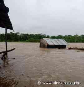 Cerca de 500 familias afectadas dejaron las lluvias en Vigía del Fuerte, Antioquia - Alerta Paisa