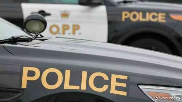 Man, 27, arrested after manhunt in Millhaven area, say police - CBC.ca