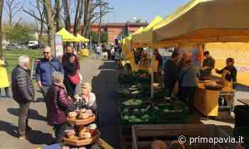 Riprende regolarmente domenica il Mercato di Campagna Amica a Vigevano - Prima Pavia