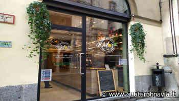 MELO's, dove mangiare super polpette vegetariane a Pavia - Quatarob Pavia