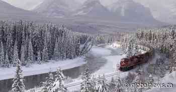 Study finds train speed a top factor in wildlife deaths in Banff, Yoho national parks