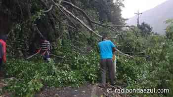 Más de 50 casas afectadas en 10 sectores dejó el fuerte ventarrón y lluvia en San Juan del Oro - Radio Onda Azul