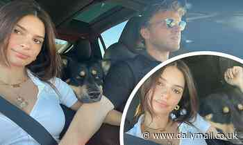 Emily Ratajkowski's husband Sebastian Bear McClard caresses her pregnant tummy in the car