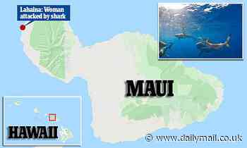 California woman, 35, hospitalized after apparent shark bite as she swims off the coast of Maui