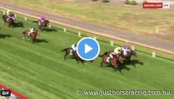 Traralgon Cup results and replay – 2020 - Just Horse Racing