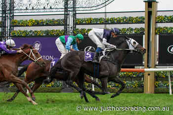 Traralgon Cup Field – 2020 - Just Horse Racing