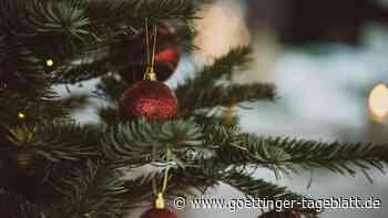Grün und nachhaltig: Darauf sollten Sie beim Weihnachtsbaumkauf achten