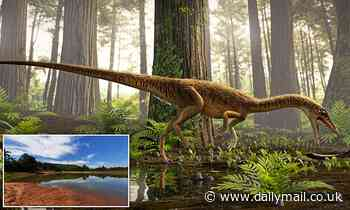 Remains of the oldest relative of the T-Rex are unearthed in Brazil