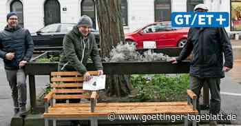 Bänke und Baumscheiben: So wird die Deisterstraße aufgehüscht