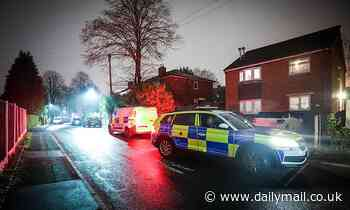Boy, 12, is arrested on suspicion of possessing a gun after resident threatened at home in Bury