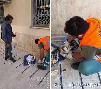 """Marsala più pulita e più sicura,intensificati i controlli,Milazzo: """"con i cittadini rispettosi delle regole per tutelare l'ambiente"""" - Sicilia Oggi Notizie"""