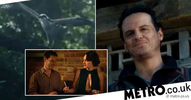His Dark Materials season 2: Excitement is high as Fleabag stars Andrew Scott and Phoebe Waller-Bridge reunite