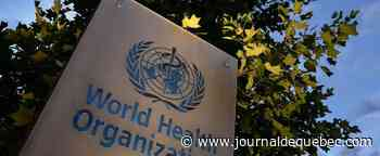 Les progrès dans la lutte contre le paludisme au point mort