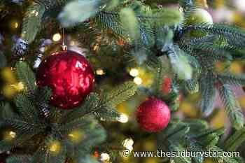 Festival of Trees to support two charities