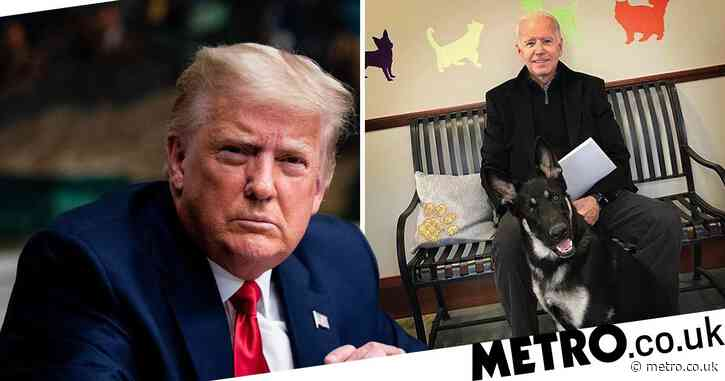Trump tells Biden 'get well soon' after fracturing foot playing with dog
