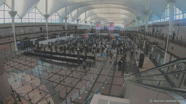 Passengers At Denver International Airport Share Mixed Opinions About Holiday Air Travel And COVID