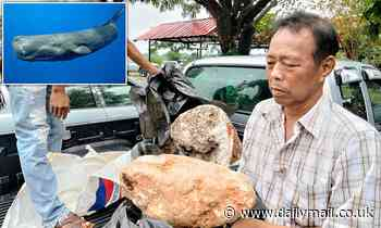 Thai fisherman finds 'the world's biggest' blob of whale vomit - that could be worth £2.4MILLION
