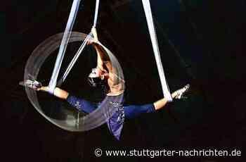 Rhythmische Sportgymnastik: Mit Leidenschaft und Sinn für das Machbare - Stuttgarter Nachrichten