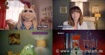 Neue Serie: Miss Piggy hat jetzt einen Video-Blog - klatsch-tratsch.de