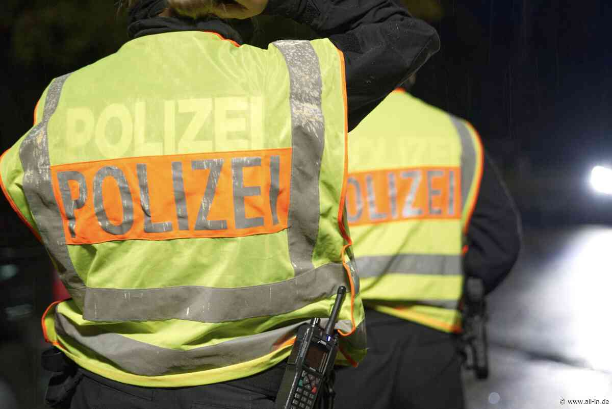 Grenzpolizei: Mehrere Straftaten bei Kontrolle in Lindau festgestellt - Lindau - all-in.de - Das Allgäu Online!