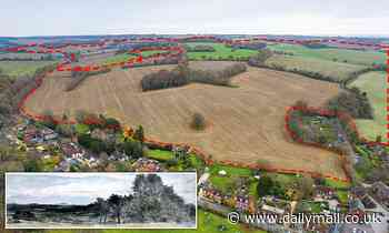 Historic landscape immortalised by John Constable set to be 'concreted over' with 5,000 homes