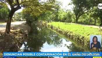 Noticias Residentes temen contaminación en 'El Caño' de Dolega - TVN Panamá