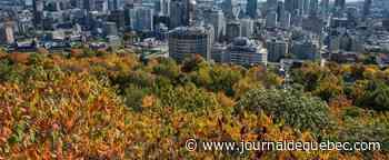 Météo au Québec: des records de chaleur pour un début décembre