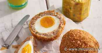 What counts as a substantial meal in a pub as Scotch egg confusion continues