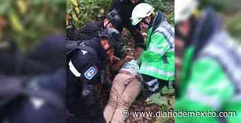 Rescatan a joven que cayó a un barranco de la carretera México-Cuernavaca | Diario de México - Diario de México
