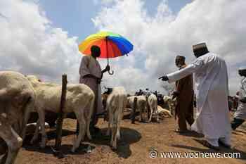 Nigerian Authorities Worry as Citizens Flout Coronavirus Rules - Voice of America