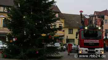 Empörung auf Facebook: Weihnachtsbaumpinkler in Elsterwerda zeigt sich reumütig - rbb24