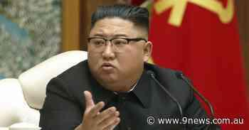Kim Jong-un gets experimental coronavirus vaccine from China: reports - 9News