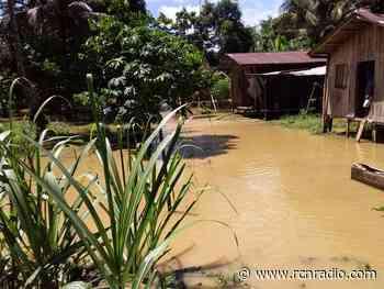 Cerca de 3.000 damnificados dejan las lluvias en Vigía del Fuerte, Antioquia - RCN Radio