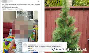 Sydney mum accidentally puts baby SON up for sale as she tries to sell a $50 Christmas tree in Bondi