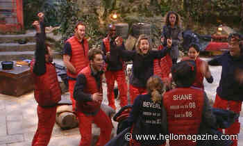 Viewers had hilarious response to I'm A Celebrity campmates in the pub
