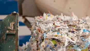 La Ecoleaf di Sannicandro di Bari: il nostro impianto amico dell'ambiente e dell'agricoltura - Puglia In