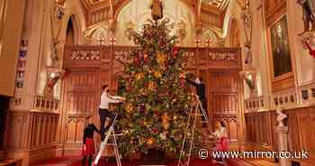 Queen's Windsor decs unveiled as she prepares to spend Xmas there without family